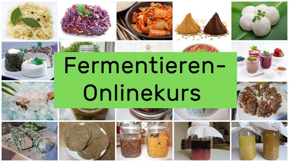 Fermentieren Online-Kurs